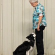 Open Dog Obedience Training Class