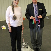 rally-ada-sheltie-2nd